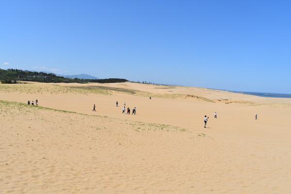 鳥取砂丘 (6)