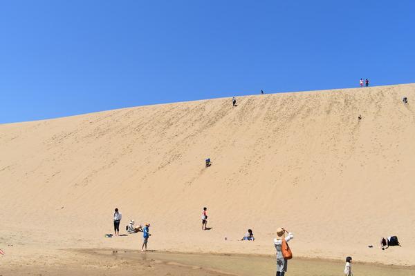 鳥取砂丘 (13)