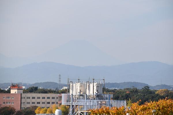フレームアームズ・ガール聖地巡礼(秋) (38)