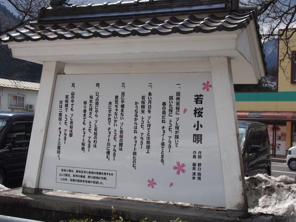 隼さくら@若桜鉄道 (8)