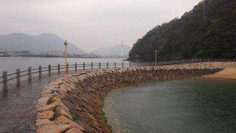 竹原桜1 (47)