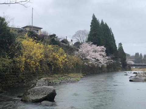 龍門の滝 (2)