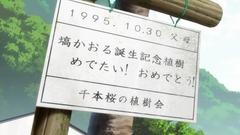竹原桜参考画像 (1)