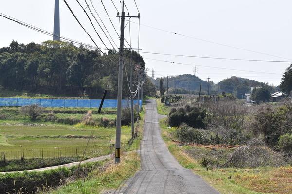 針尾送信所への道 (2)