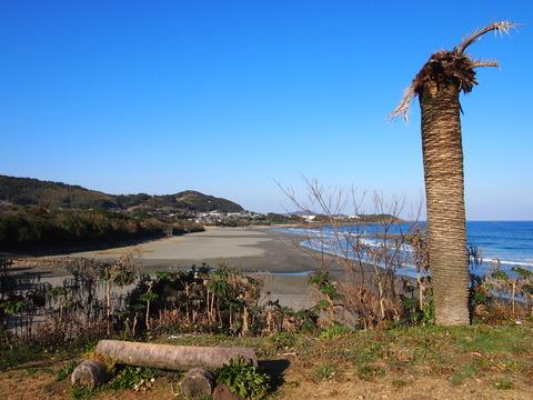 金ヶ浜海岸