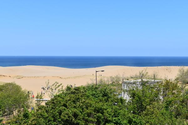 砂の美術館 (7)