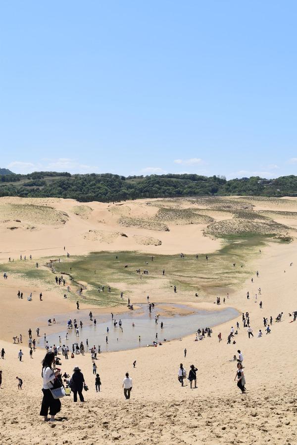 鳥取砂丘 (29)