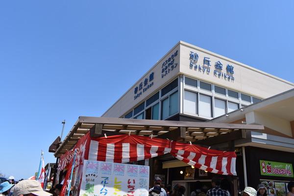 鳥取砂丘 (35)