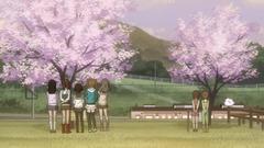 竹原桜参考画像 (7)