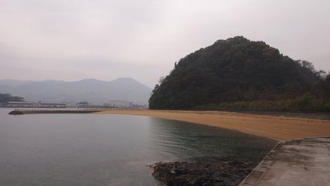 竹原桜1 (40)