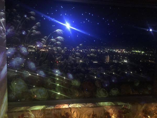 佐賀の夜〜さくらちゃんが泊まったホテルに僕も泊まる〜 (56)
