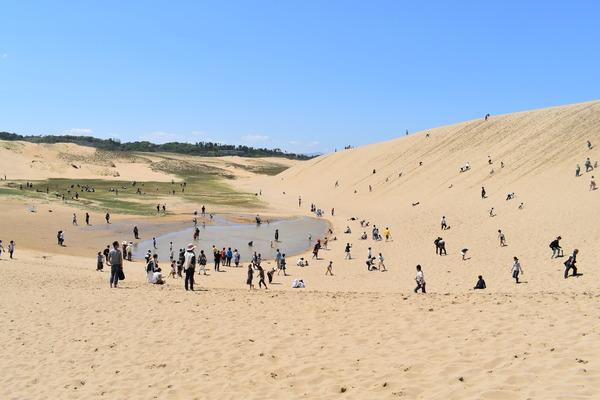 鳥取砂丘 (17)