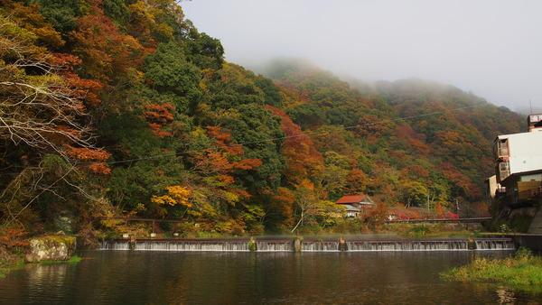 倉吉まち応援プロジェクト遠征ダイジェスト (15)