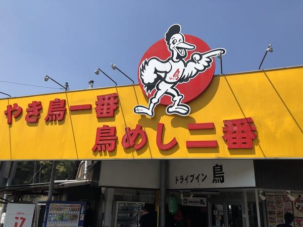 ZLSさくら巡礼 (89)