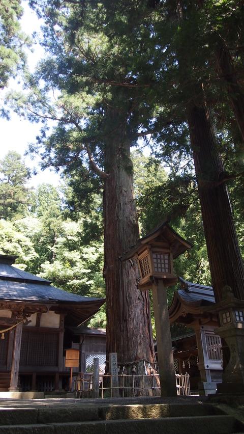 25日枝神社