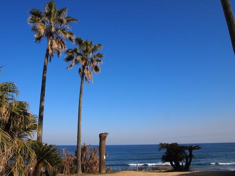 金ヶ浜海岸 (2)