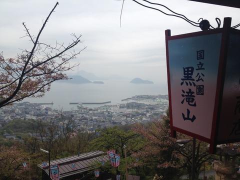 竹原桜1 (5)