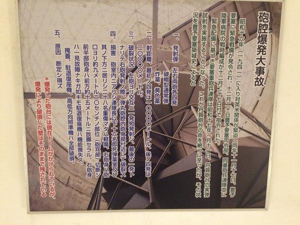 丹賀砲台園地 (44)