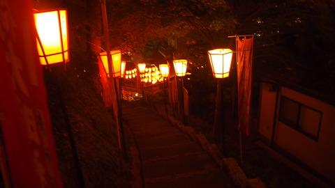 56ぼんぼり点灯(湯涌稲荷神社)