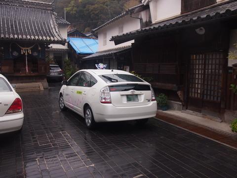 竹原桜2 (56)
