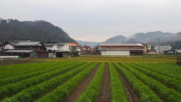 春の鉄道むすめ巡り智頭急行後編  (27)