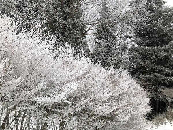 冬の大遠征ダイジェスト4 (47)