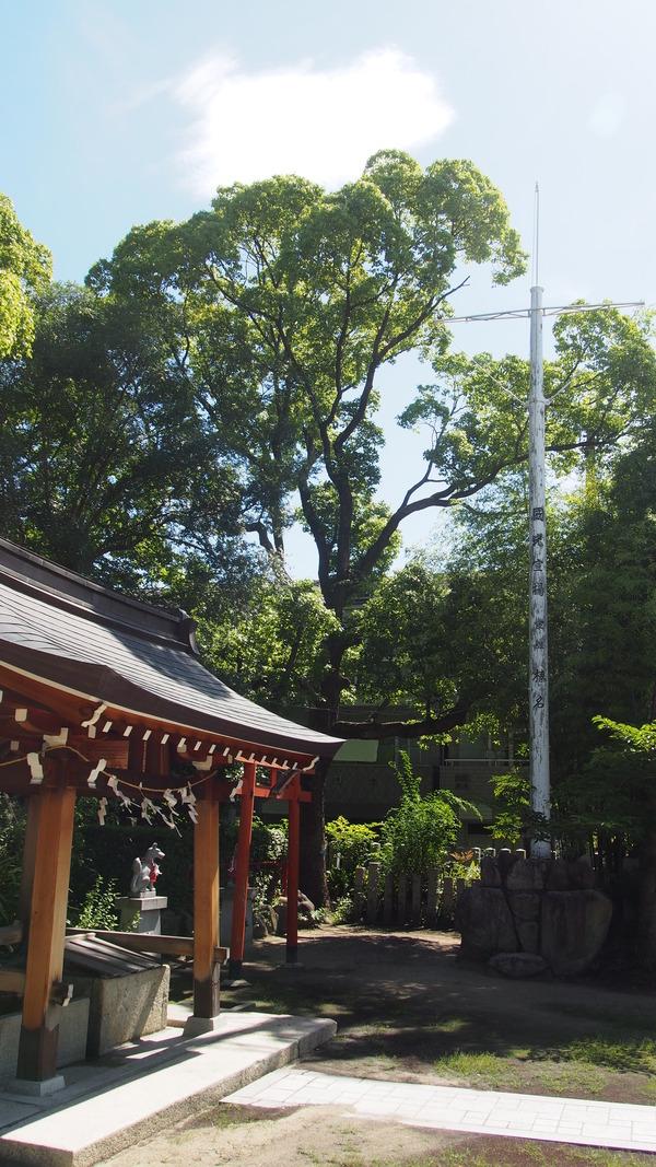 関西弾丸遠征 (51)