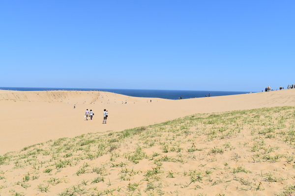 鳥取砂丘 (5)