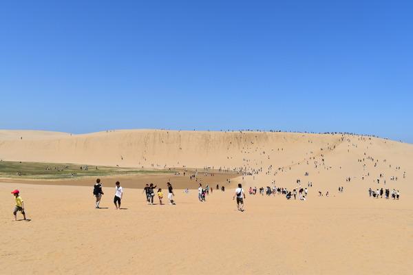 鳥取砂丘 (9)
