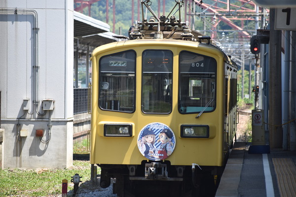 近江鉄道伊豆箱根鉄道コラボHM (22)