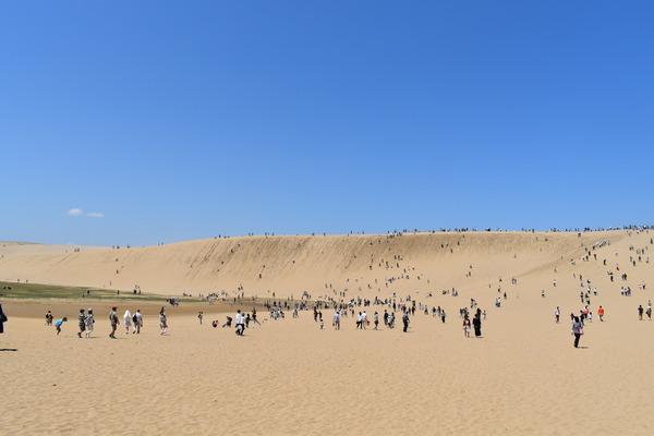 鳥取砂丘 (33)