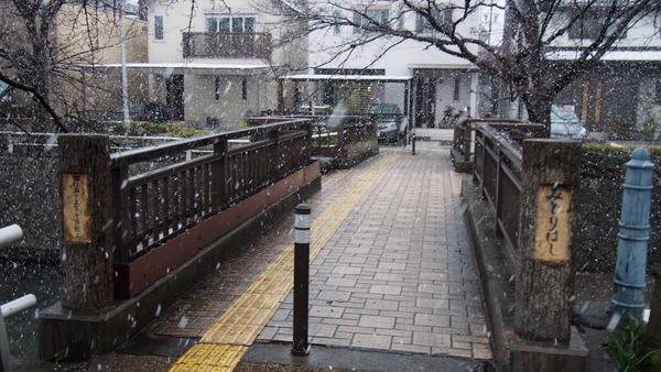 聲の形聖地巡礼・大垣市内 (70)