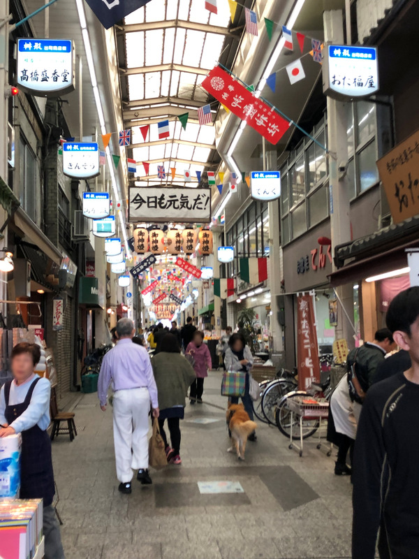 叡電と出町柳商店街 (28)