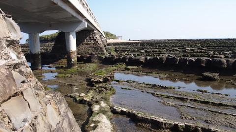 弥生橋下(2)