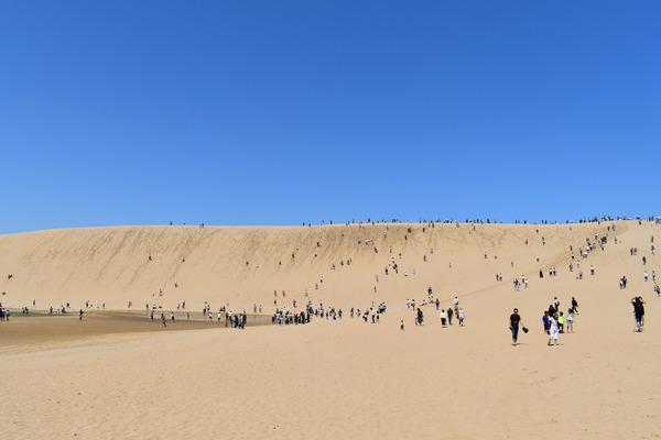 鳥取砂丘 (10)