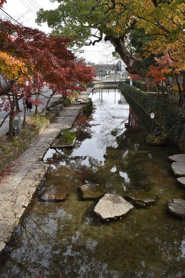 佐嘉神社の紅葉とゾンサガスタンプラリー (5)