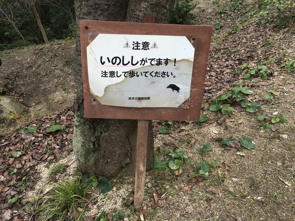 工廠神社と串山公園 (11)