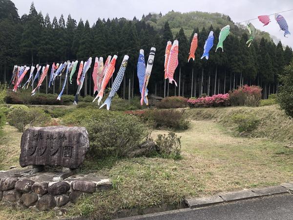 宮本武蔵 (24)