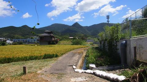 新道寺 (6)