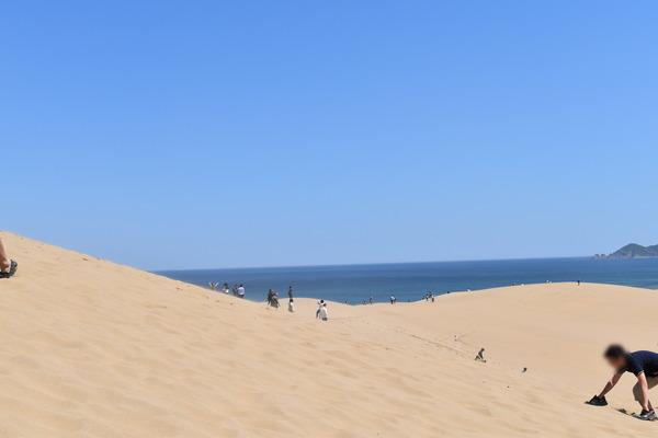 鳥取砂丘 (19)