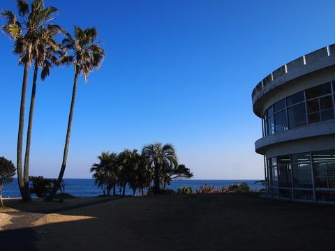 シーサイドパーク太平洋から海を望む