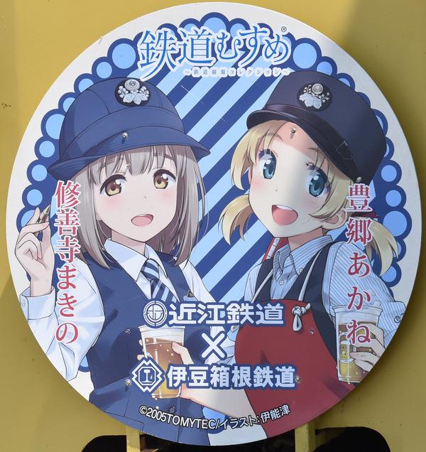 近江鉄道伊豆箱根鉄道コラボHM (17)