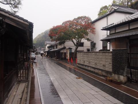 竹原桜2 (22)