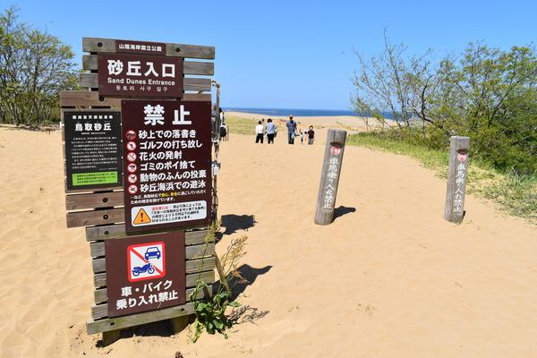 鳥取砂丘 (2)