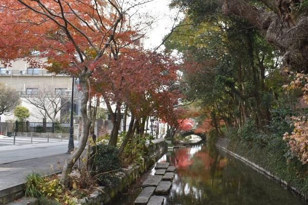 佐嘉神社の紅葉とゾンサガスタンプラリー (8)