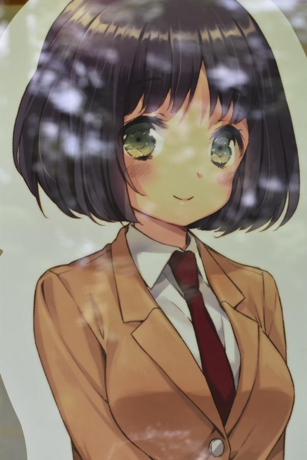 ひなビタ巡礼 (31)