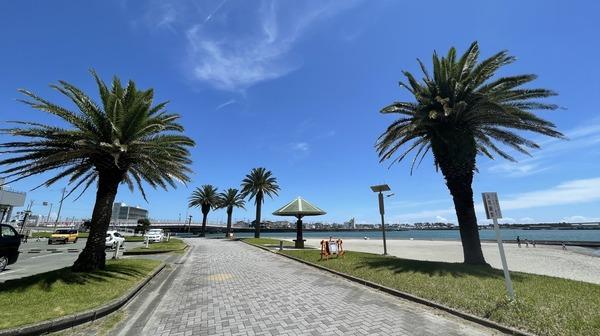 海浜公園 (1)