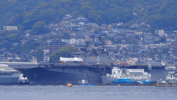 倉島岸壁で望遠レンズテスト (11)