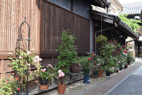 半年ぶりの竹原聖地巡礼 (48)