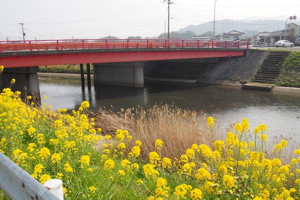 豊肥線の旅2「宇佐駅と神奈ちゃん」 (38)